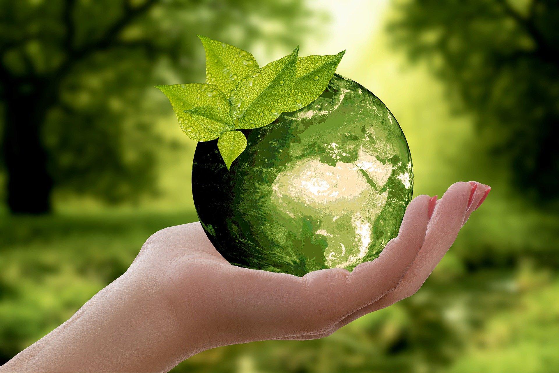 La sostenibilidad en la digitalización de las empresas